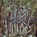 Lost in the woods - various artists. Chase Records 50. 2012 (netlabel).